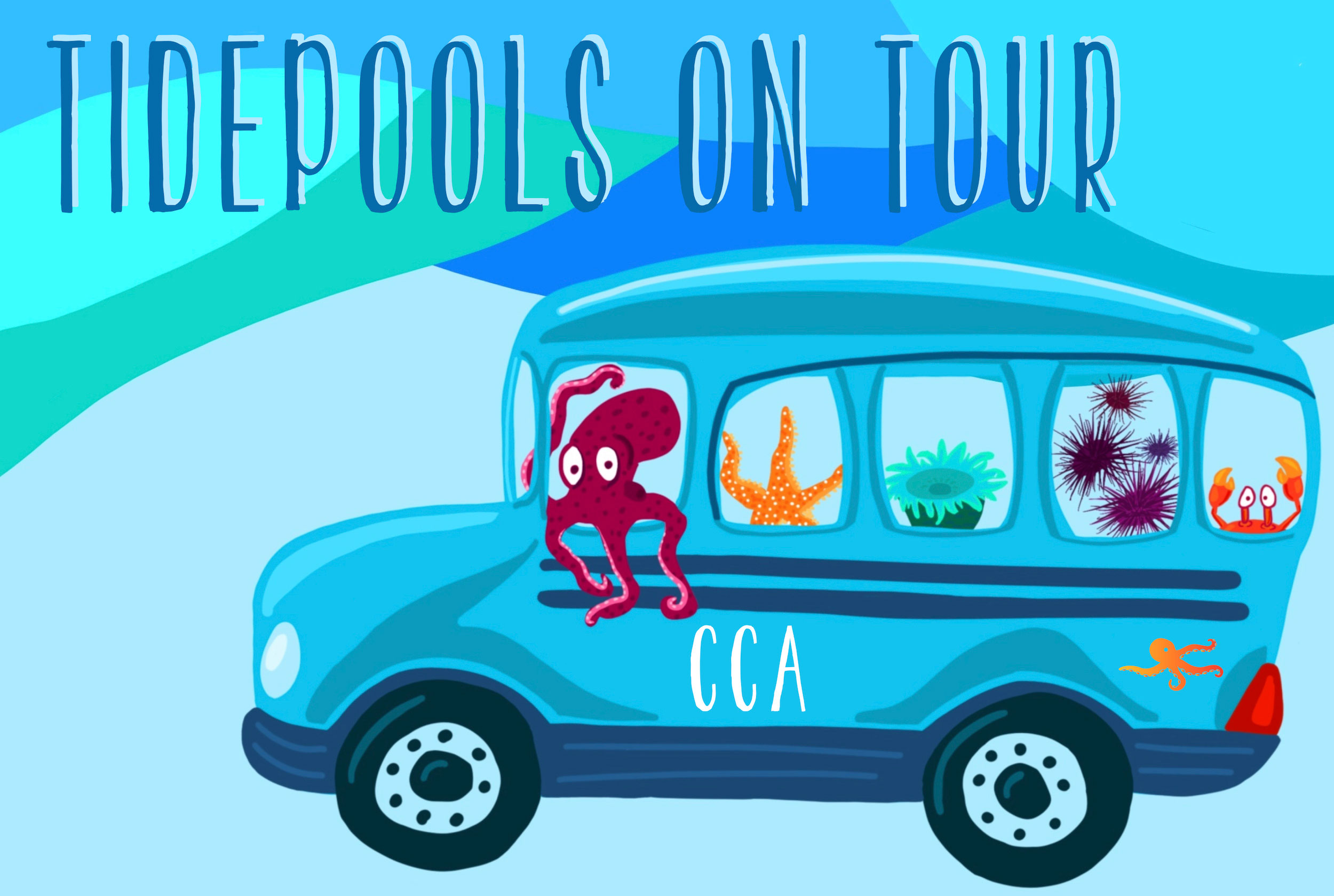 Tidepools On Tour